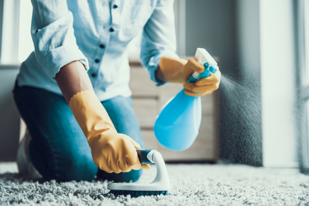 Young Beautiful Woman Cleaning Carpet with Brush. Closeup of Girl wearing Protective Gloves Cleaning Carpet by spraying Cleaning Products and using Brush. Woman Cleaning Apartment