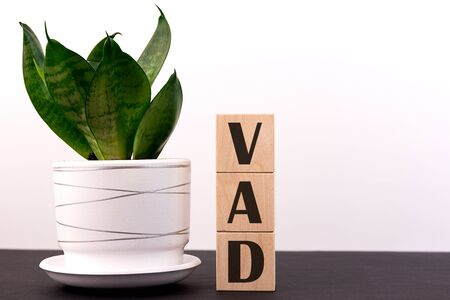VAD - Value Added Distributor acronym, business concept background Imagens
