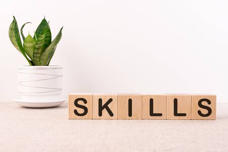 Skills Word Written In Wooden Cube on a light background