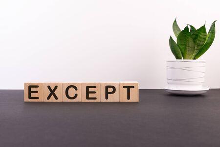 Excepto palabra escrita en bloques de madera sobre una mesa oscura con una flor y un fondo claro