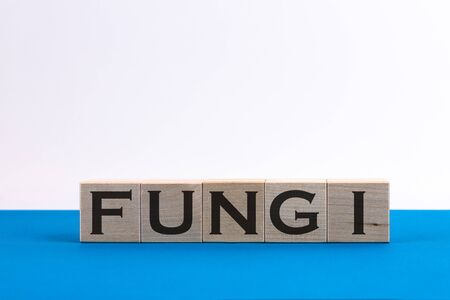 Fungi word concept on wood cube, Medical concept 스톡 콘텐츠