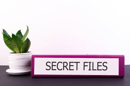 secret files inscription on the Office folder on a dark desktop with a flower in a flowerpot on a light background