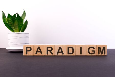 PARADIGM word made with building blocks on a light background