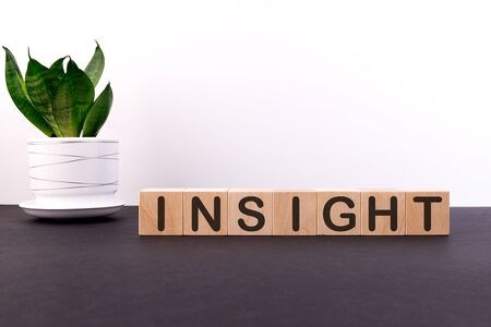 Wooden Blocks with the text INSIGHT on a light background Banco de Imagens