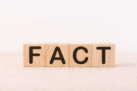 FACT word made with building blocks on a light background