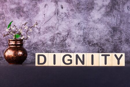 DIGNITY word made with building blocks on a grey background