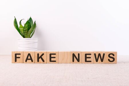 Word Fake News is written on wooden cubes blocks on a light table with a flower and a light background. Stock Photo
