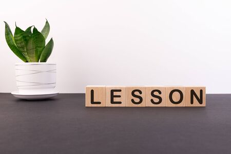 Word LESSON made with wood building blocks on a light background Stock Photo