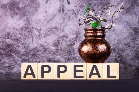 Word APPEAL made with wood building blocks on a gray back ground