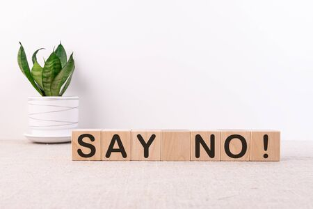 SAY NO word concept written on wooden blocks lying on a light table with a flower in a flowerpot on a light background