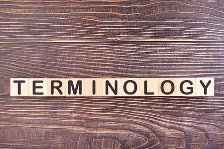 TERMINOLOGY word made with wood building blocks