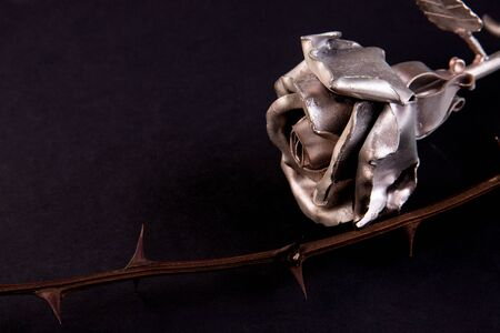 Metal rose on a dark background with a branch with spikes, concept symbol of stamina, courage, faith, Holocaust.