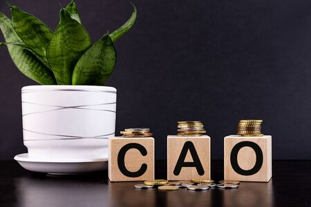 CAO financial business concept. Wooden cubes and coins. Banque d'images