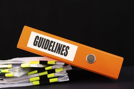 Text, word Guidelines is written on a folder lying on documents on an office desk. Business concept.