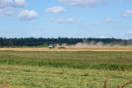 Truck loaded with millet in the countryside, driving across the field. 스톡 콘텐츠