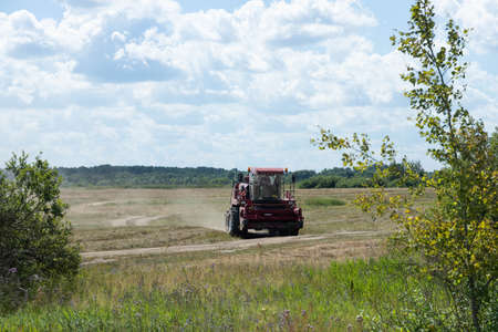 Red harvester on a rural field, harvesting grain on a sunny summer day, driving along the road.