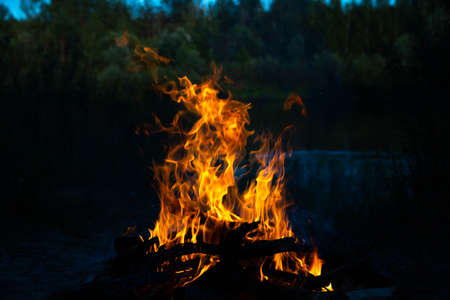 Bonfire, fire, smoke on a background of nature.