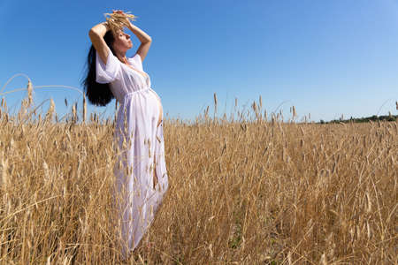 A pregnant woman in a white dress with a bundle of wheat in her hands against the background of a field with ripening wheat. The concept of motherhood and fertility. Standard-Bild