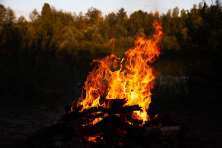 Burning fire with wood. Cooking and heating concept.