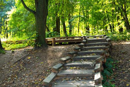 Ecological trail in the European city park. Archivio Fotografico - 156551047