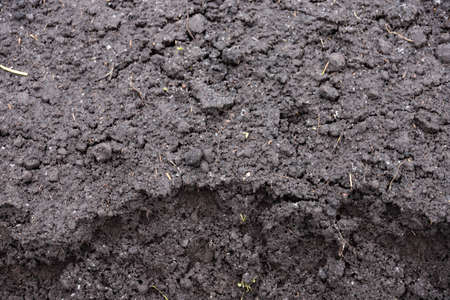 Black earth texture, humus, fertile soil. Background.
