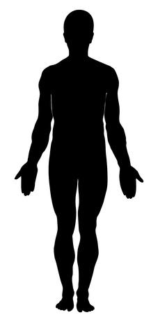anatomie mens: Silhouet van de mens. Anatomie