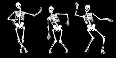 scheletro umano: Bianchi scheletri ubriachi su fondo nero. Set # 2. Vettore