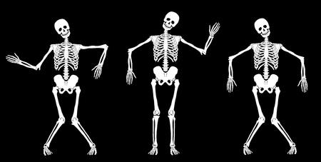 spine x ray: White dancing skeletons on black. Set #1. Vector Illustration