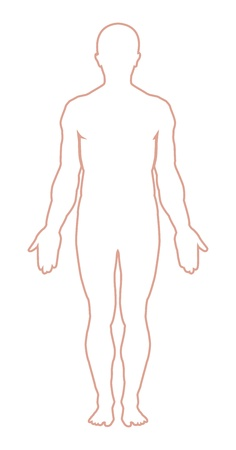 human foot: Male body outline. Vector illustration Illustration
