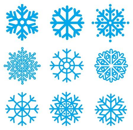 iceflower: Fiocchi di neve raccolta. Elemento di design. Illustrazione vettoriale