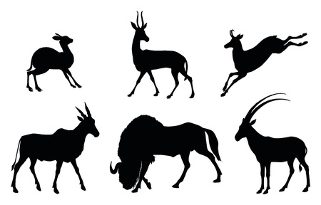 Vector antelopes silhouettes Vector