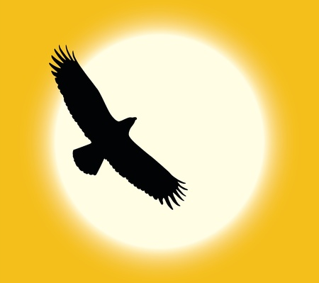 Silhouette of flying eagle on sun background