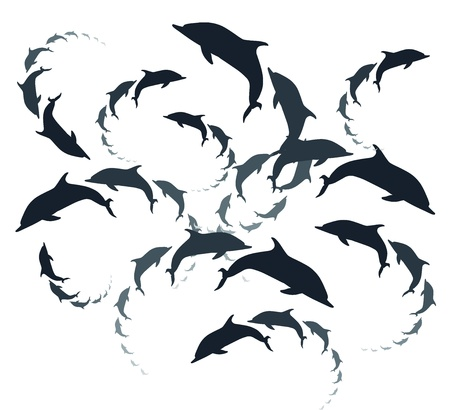 Vector dolphins background Vector