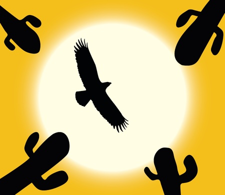 dry flies: Cactuses, flying eagle silhouette on sun background. Vector