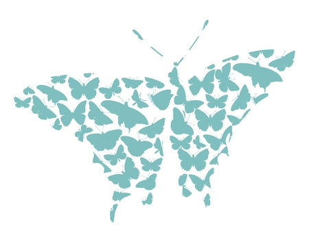 butterfly tail: Butterfly silhouettes collection isolated in white background eps8