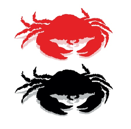cancer crab: Crab silhouette isolated.