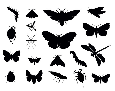 Insects silhouettes collections.  Vector