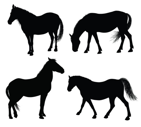Detailed horse silhouettes collection 7000x6329. Vector