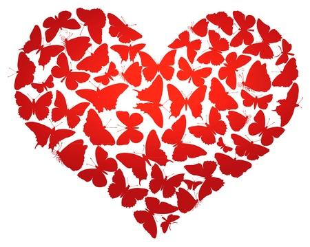 Heart made of  butterflies isolated   Vector