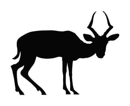 of antelope: Koodoo antelope silhouette