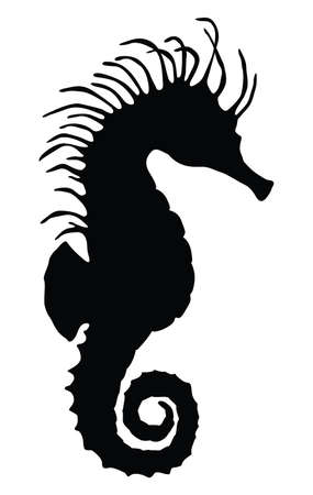 sea horse: Sea horse silhouette Illustration