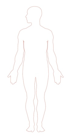 body outline: Human body outline illustration Illustration