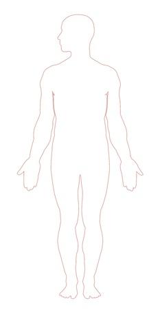 human body silhouette: Human body outline illustration Illustration
