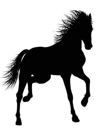 Detallada caballo corriendo Vector silueta