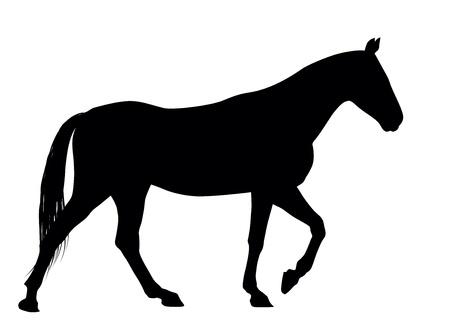 horse saddle: Running Horses silhouette dettagliata Vettoriali