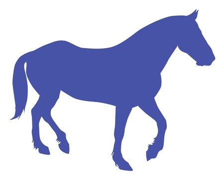 Running horses detailed silhouette. Vector