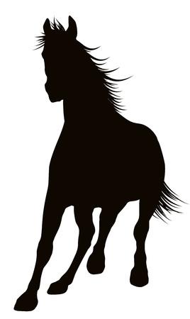 black horse: Caballos corriendo silueta detallada Vectores