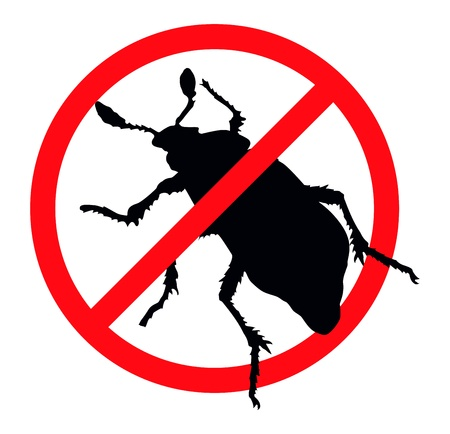 Beetle silhouette isolated. Insect repellent emblem  イラスト・ベクター素材