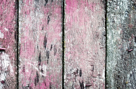 Vintage wooden texture. Background. Close up Stock Photo - 16130549