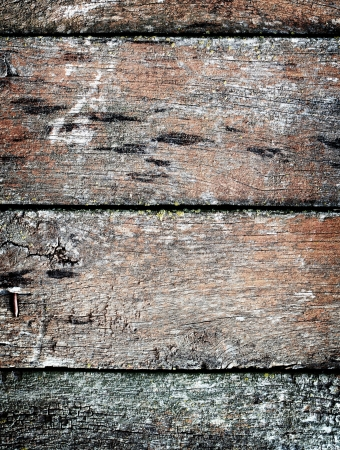 Vintage wooden texture. Background. Close up Stock Photo - 16246492